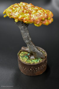 Chocolate Bonsai